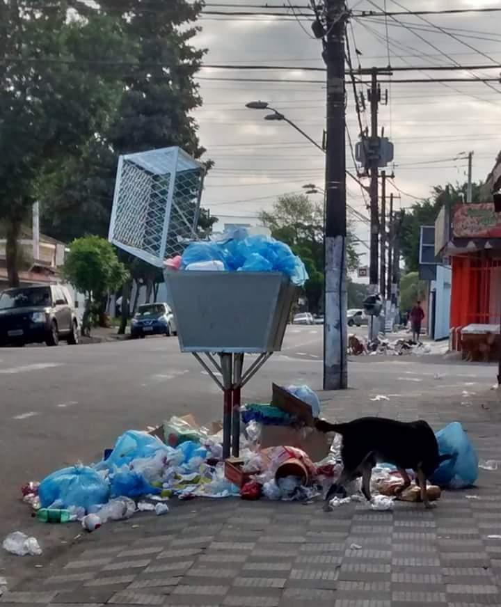Agora a cidade não coleta o lixo em muitos bairros.