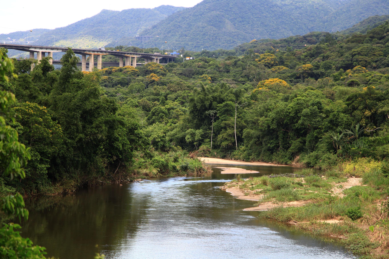 Rios que cortam Cubatão acumulam grande quantidade de terra, vegetais e outros tipos de entulhos. (Foto: Raimundo Rosa)